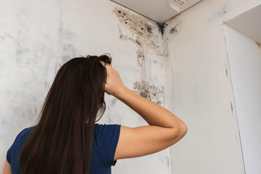 Woman looking at black mold